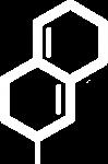Icon Logo white